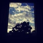 Abbortsford Convent window2